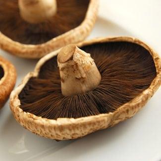 Portobello-Mushroom