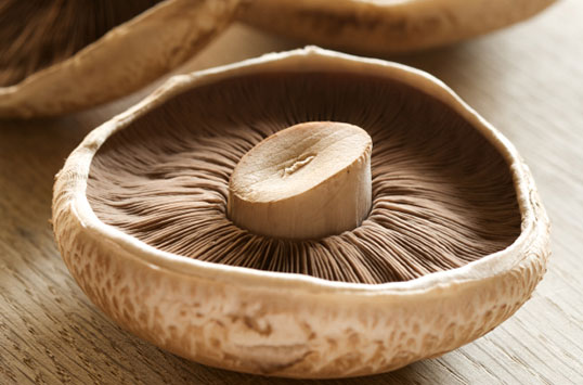 Portabella Mushrooms Taste Great and Can Charge Your Cell Phone Battery